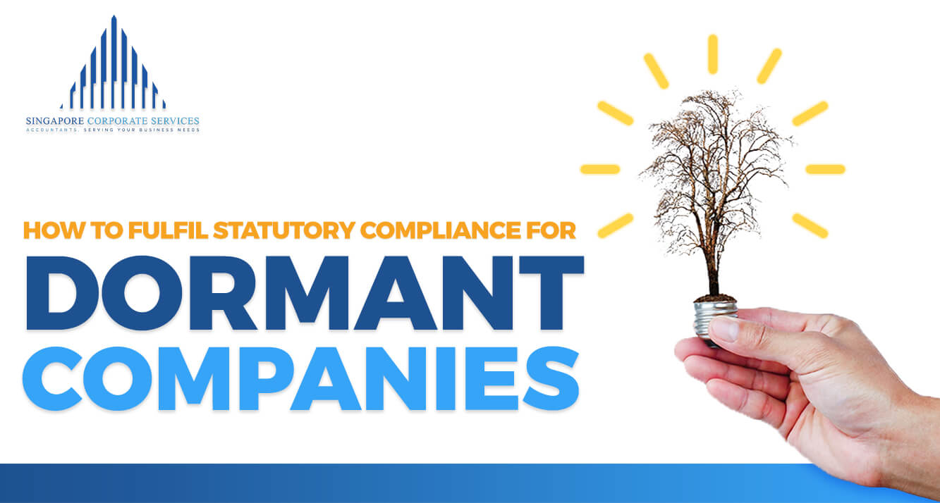 SCS Accounting - How to Fulfil Statutory Compliance for Dormant Companies